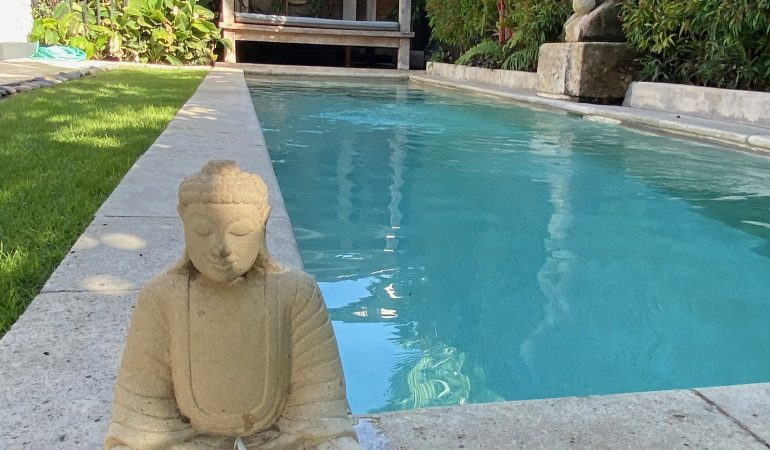 pool view with Buddha statue